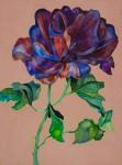 Ribbon Rose thumbnail